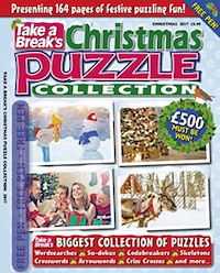 Seasonal Puzzle Collection