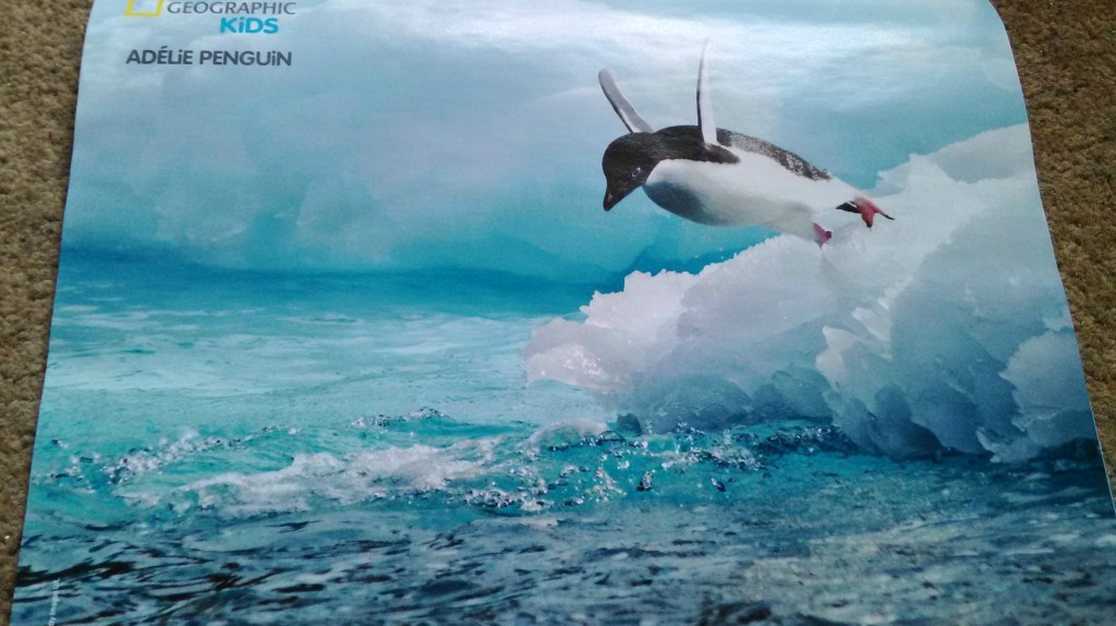 Poster of a penguin in National Geographic Kids