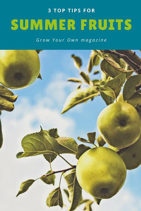 3 top tips for summer fruit | magazine.co.uk