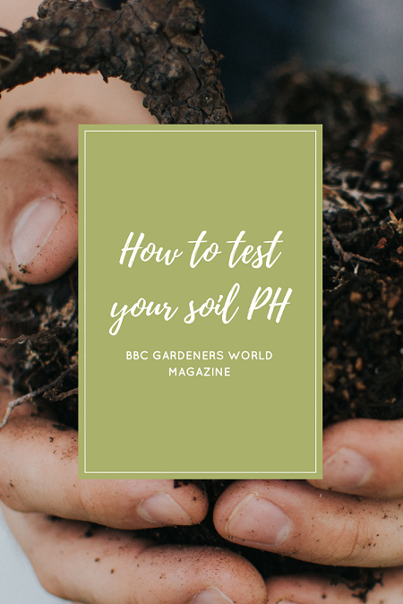 How to test your soil PH | magazine.co.uk