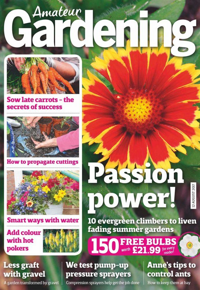 Amateur Gardening magazine | The 10 best gardening magazines | magazine.co.uk
