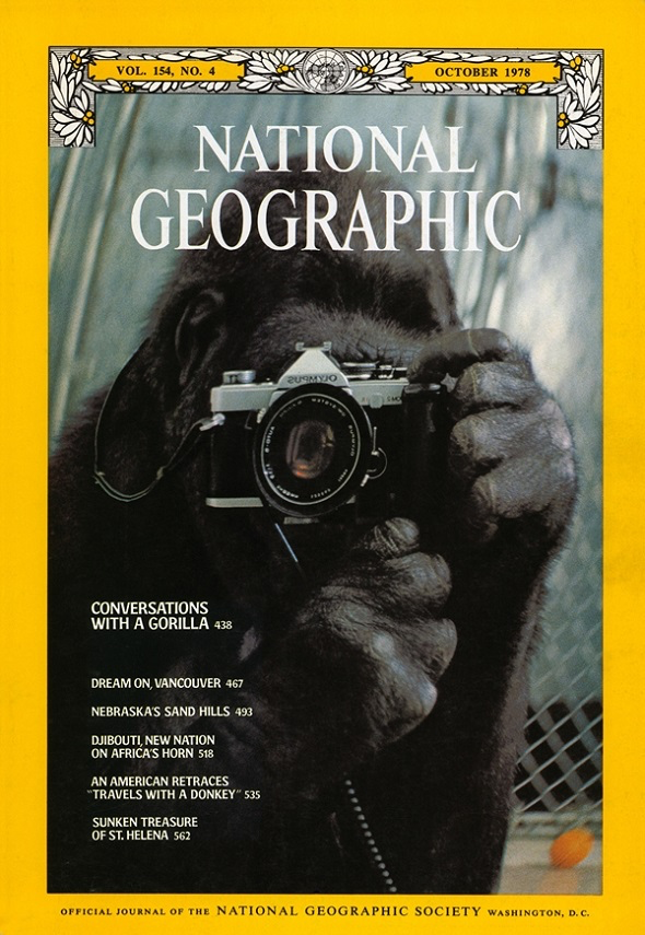Conversations with a Gorilla, Vol 154 No. 4 - October 1978 National Geographic Cover