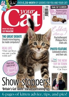 The 5 Best Pets Magazines