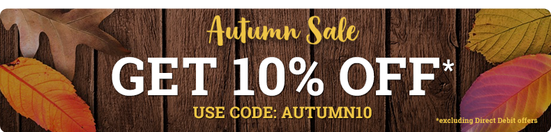 Autumn Sale - 10% OFF